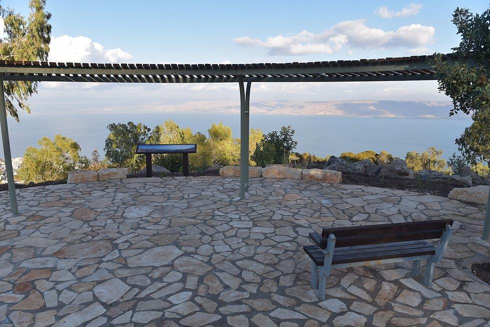 נוף מרהיב לכינרת (צילום: מיכאל חורי) (צילום: מיכאל חורי)