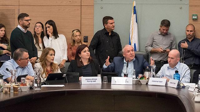 הדיון בוועדת הפנים (צילום: יואב דודקביץ') (צילום: יואב דודקביץ')