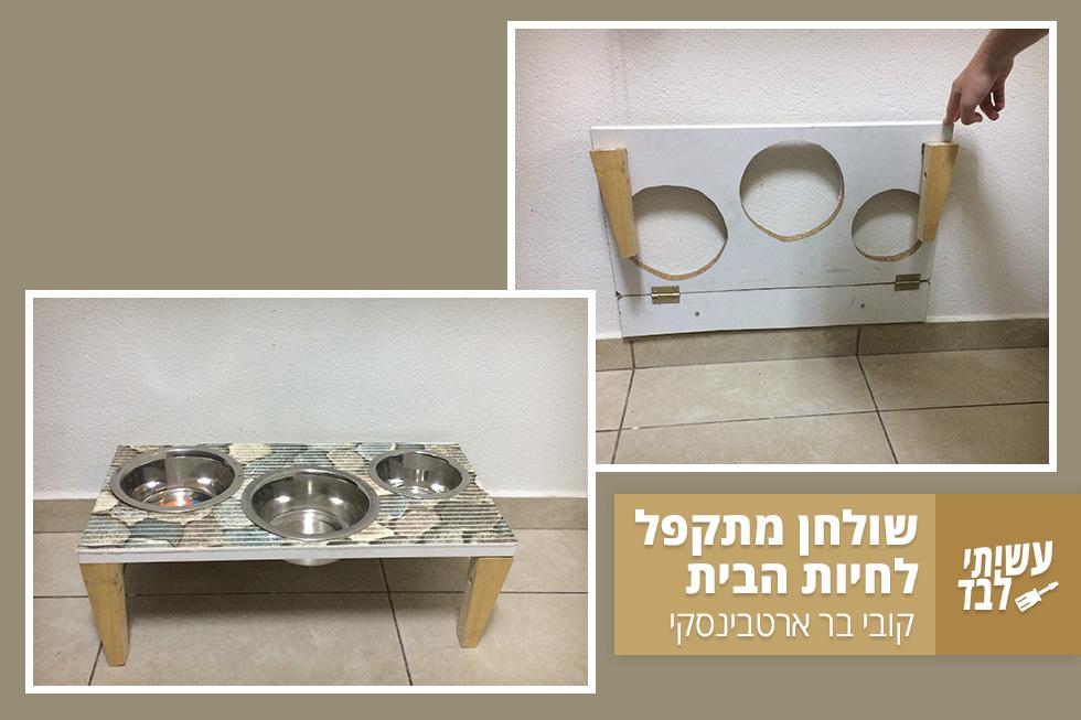 גם לחיות המחמד מגיע שולחן אוכל הולם, רצוי כזה שאפשר לקפל בסוף הארוחה (צילום: קובי בר)