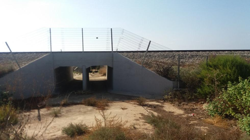(צילום: באדיבות רכבת ישראל)