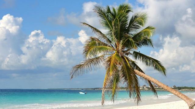חוף פלאיה פראיסו  (צילום: מתוך אתר טריפאדווייזר)