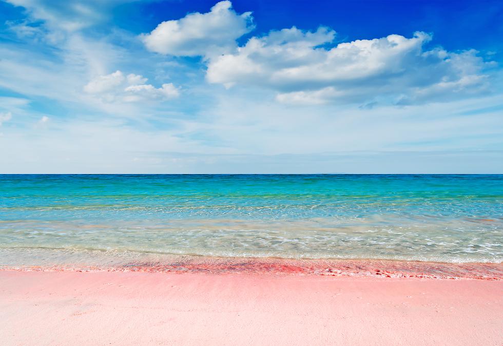 חוף פינק סנדס  (צילום: שאטרסטוק)