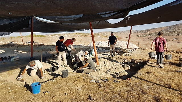 חושפים את המבנה (צילום: צילום: מיכל הבר, רשות העתיקות) (צילום: צילום: מיכל הבר, רשות העתיקות)