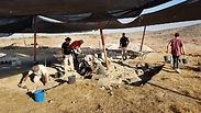 צילום: צילום: מיכל הבר, רשות העתיקות