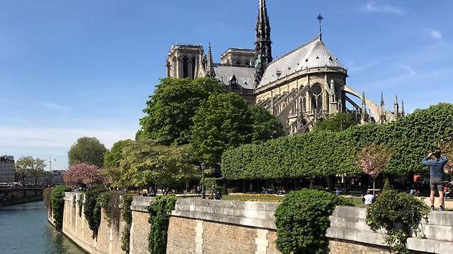 הנוטרה דאם בפריז, צרפת (צילום: דניאל דויד שליבו)