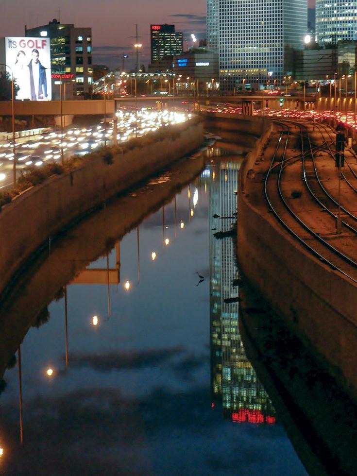 אנפה אפורה במבט דרומה מגשר שיפמן (צילום: מיטב אשכנזי)