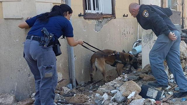 (צילום: דוברות המשטרה )