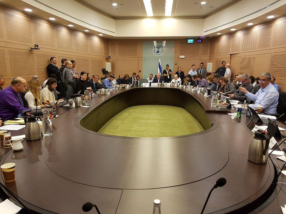 The Knesset's Internal Affairs Committee (Photo: Yishai Porat)