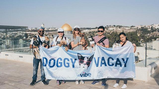 With the humans in Jerusalem (Photo: Or Kaplan, courtesy Vibe Israel)