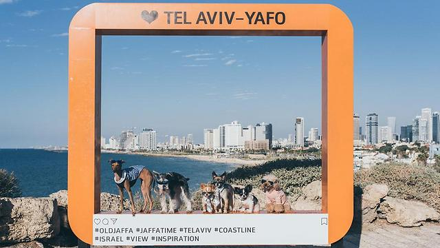 #Jaffa (Photo: Or Kaplan, courtesy Vibe Israel)