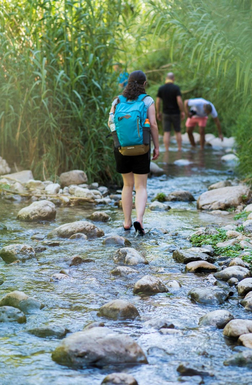 נחל פרת (צילום: רונית יהודאי מימון) (צילום: רונית יהודאי מימון)