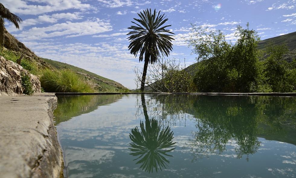 הבריכה בעין פרת (צילום: איגור קובלב) (צילום: איגור קובלב)