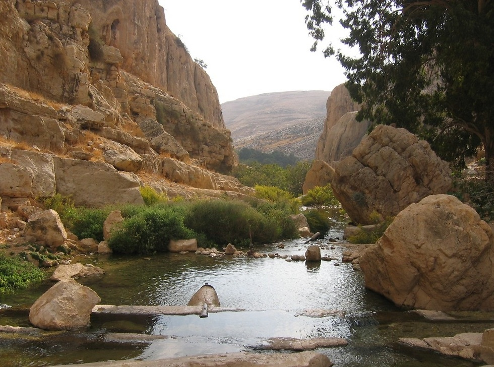 שמורת נחל פרת (צילום: שירן בן יעקב) (צילום: שירן בן יעקב)