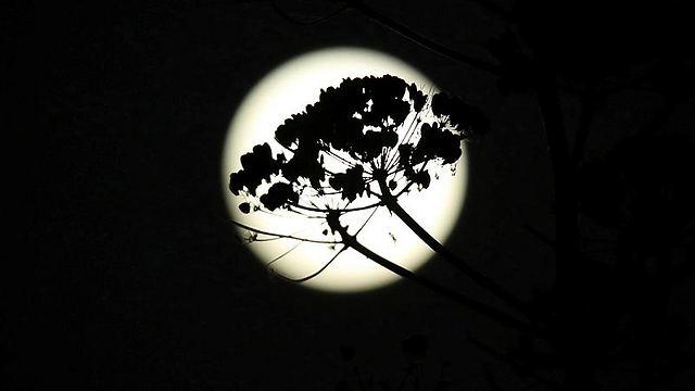 Кипр. Фото: EPA