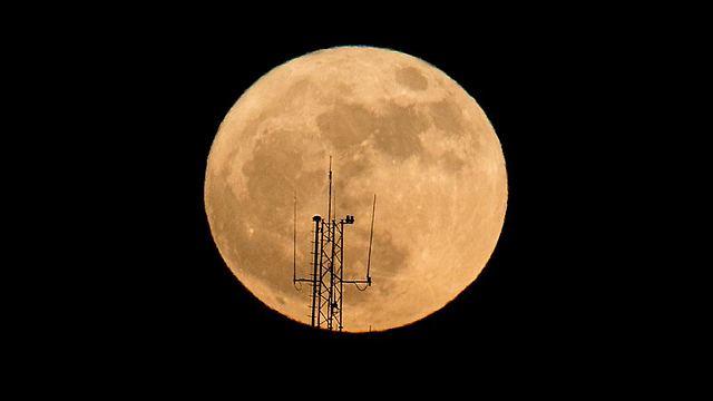 Нетания. Фото: AFP