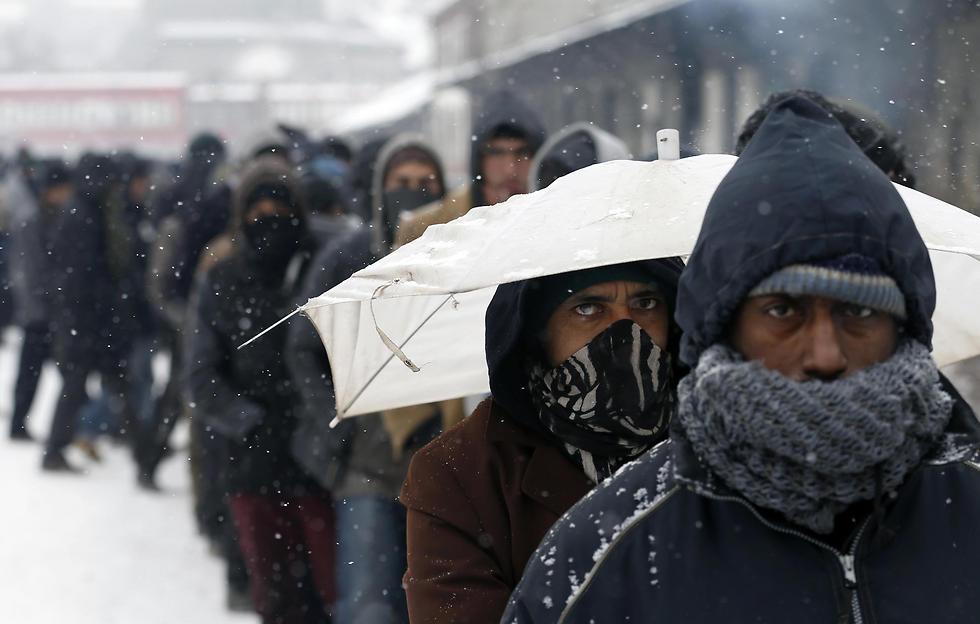 מהגרים מחכים בתור לחלוקת מזון בשלג של בלגרד, סרביה (צילום: AP) (צילום: AP)
