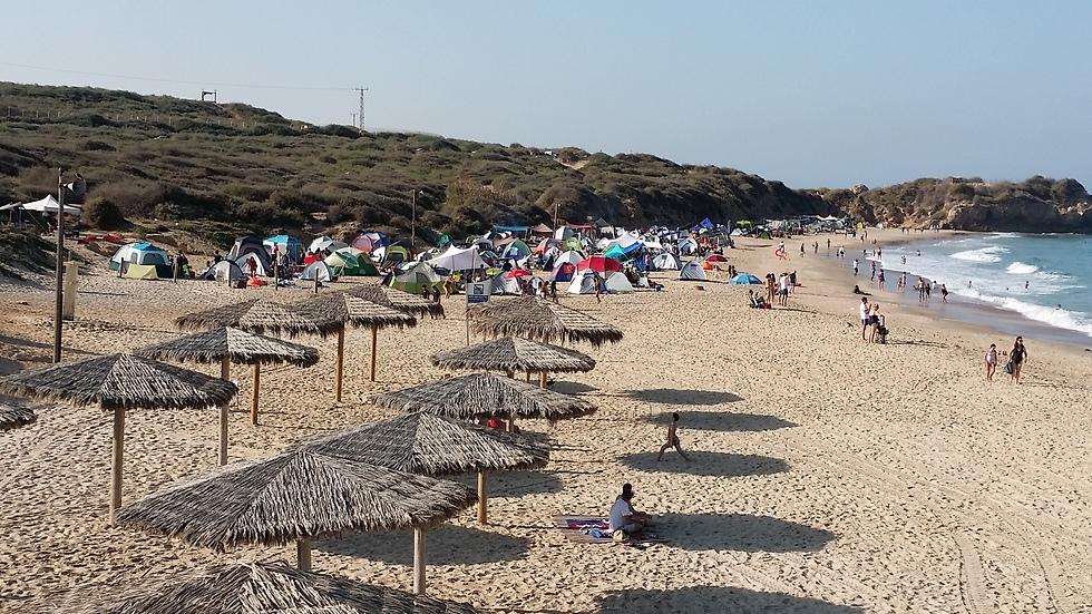 במקום ה-2 באתרים הפופולריים: גן לאומי חוף פלמחים (צילום: אמיר חן)