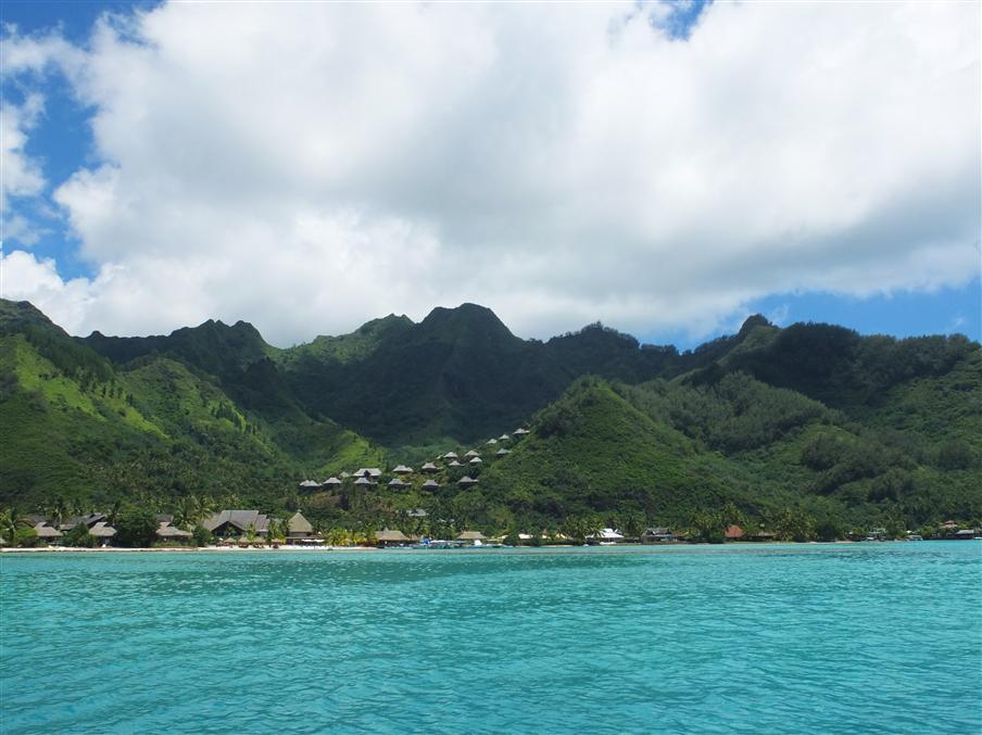 שקט באוקיינוס השקט, מוריאה (צילום: איתמר קוטלר)