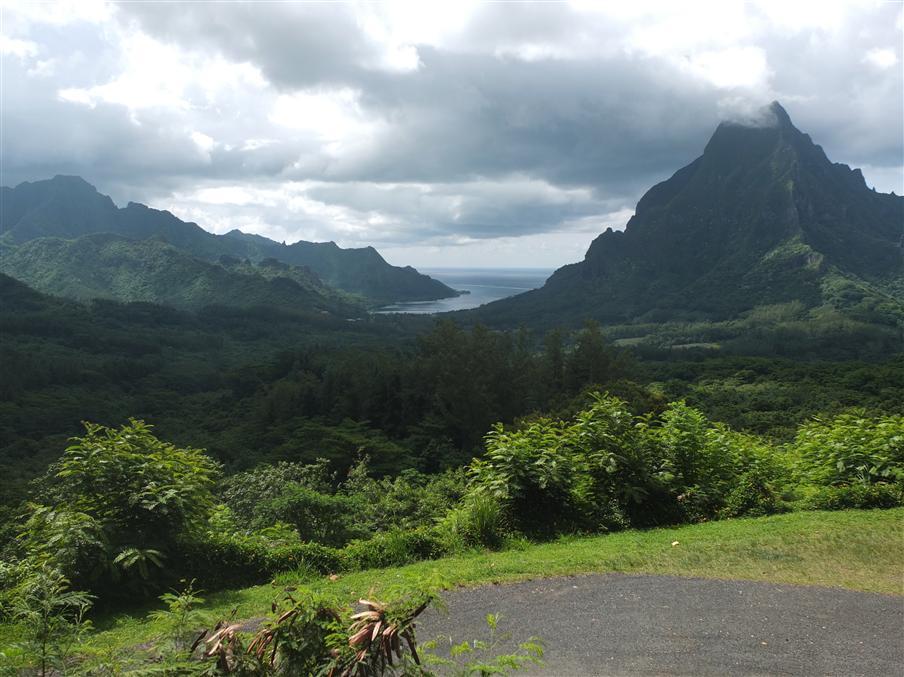 טבע במיטבו: הרי געש, יערות גשם ובעיקר הרבה ירוק (צילום: איתמר קוטלר)