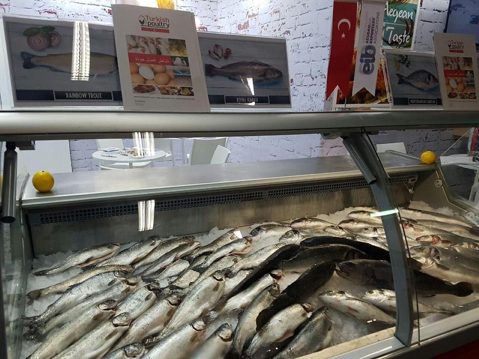 אחד ממוצרי הייצוא המובילים במזון לישראל: דגים טריים