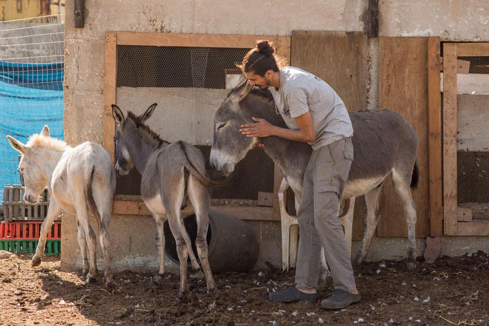 """""""גם לבעלי החיים יש אהבות ואכזבות, והם מדמיינים וחולמים בדיוק כמונו"""" (צילום: יובל חן)"""