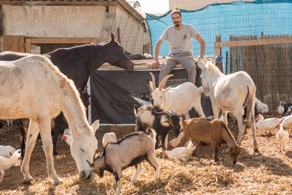 """בוזנאה והחברים. """"בעלי החיים גורמים לאנשים להכיר טוב יותר זה את זה"""". למטה: הסרטון שמלווה את קמפיין ההדסטארט (צילום: יובל חן)"""