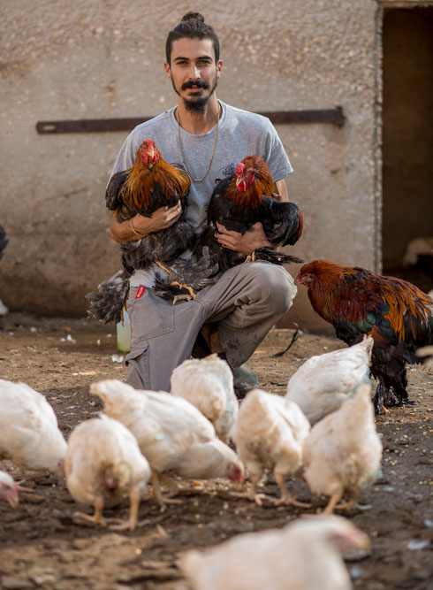 """""""ככל שנקבל יותר עזרה, נציל יותר בעלי חיים"""". הקליקו על התמונה  (צילום: יובל חן)"""