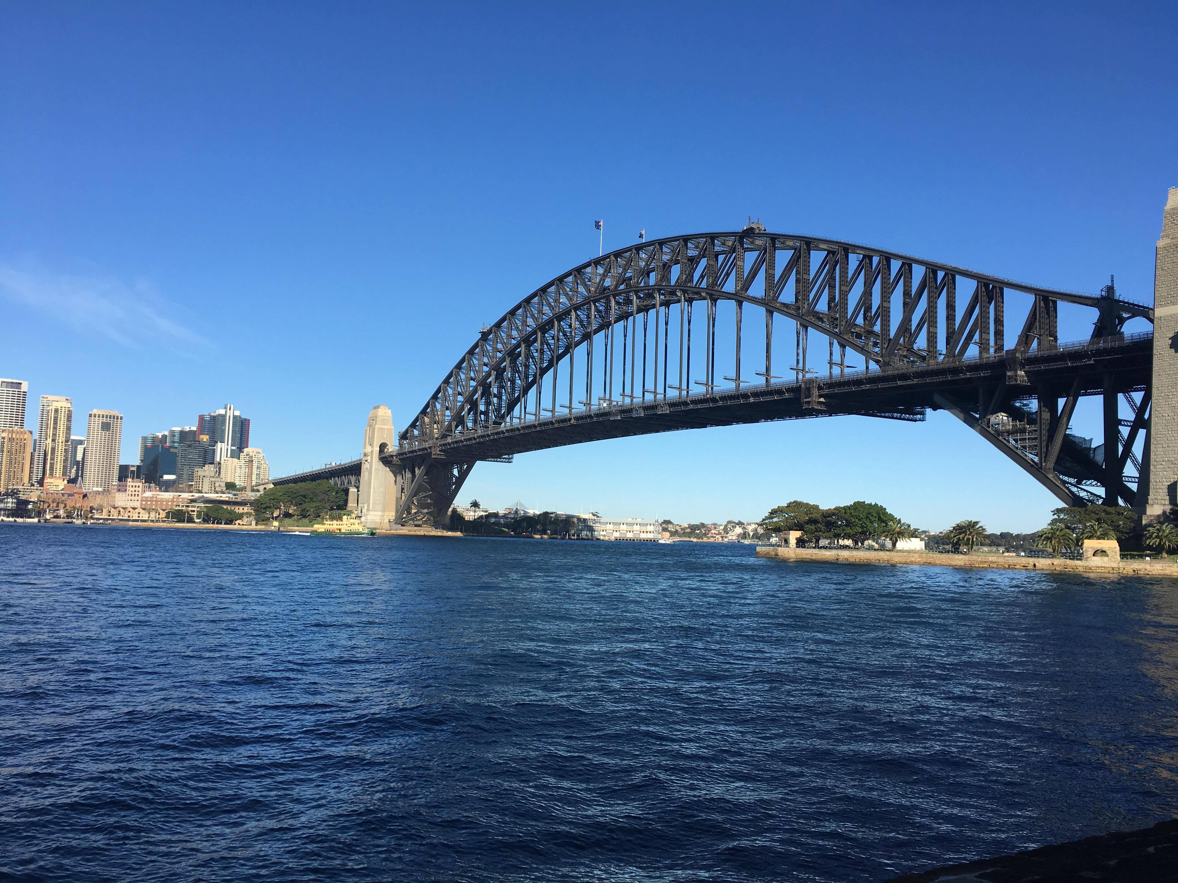לצפות בגשר המפורסם דרך ה-FERRY (צילום: שיר אפרים)