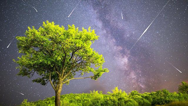 מטאורים בשמיים (צילום: shutterstock)