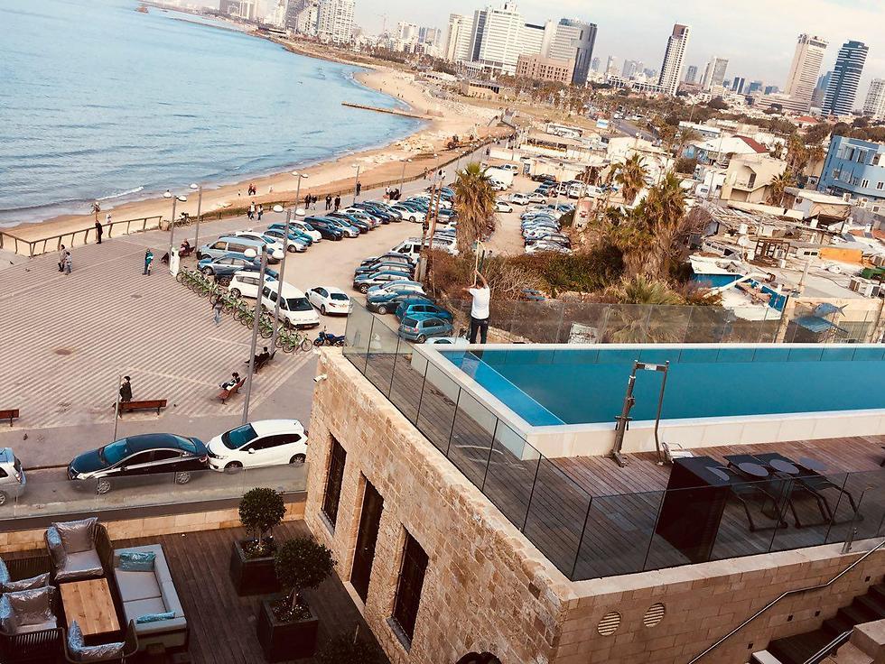 מצפון: נוף לקו הרקיע וחוף ימה של תל אביב (צילום: שירי הדר) (צילום: שירי הדר)