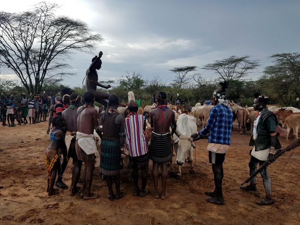 במהלך הטקס: אחד מצעירי השבט קופץ עירום מעל השוורים (צילום: יריב ואיילת כץ) (צילום: יריב ואיילת כץ)