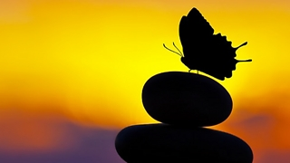 אדם נקרע בין השטן למלאך (צילום: Shutterstock) (צילום: shutterstock)
