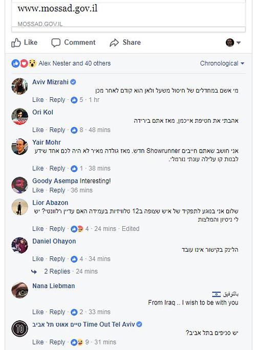 יתר ההלצות עדיין שם (צילום מסך: פייסבוק)