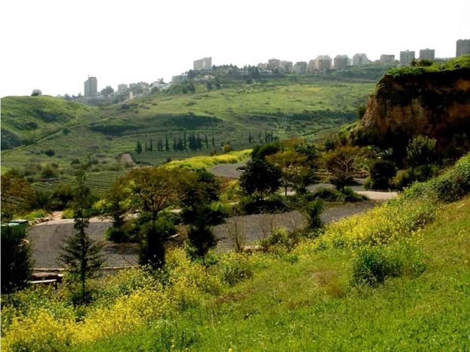 גן הרוסים בשמורת הארבל (צילום: הקרן לשיקום מחצבות) (צילום: הקרן לשיקום מחצבות)