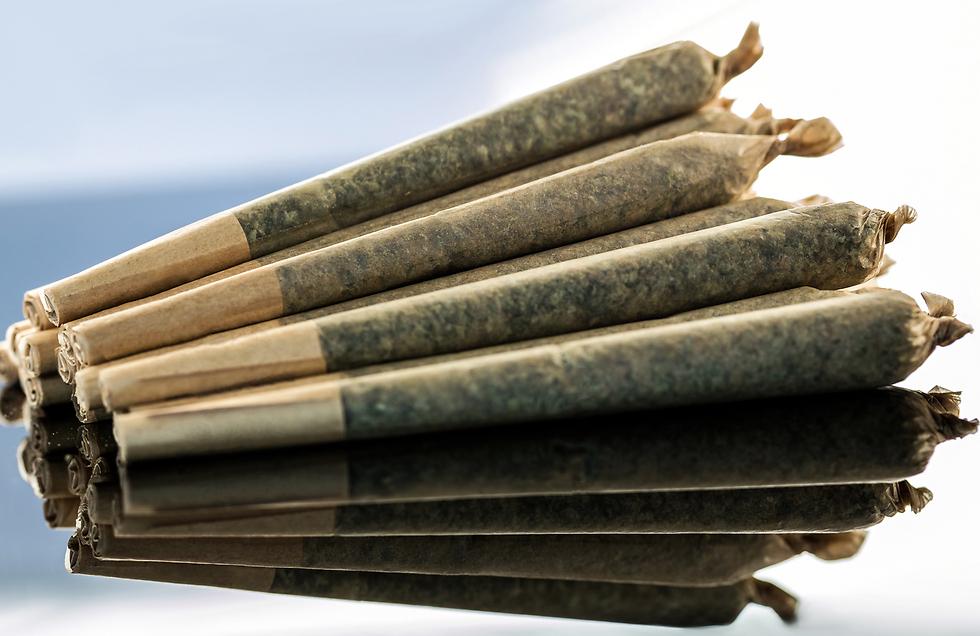 סיגריות מגולגלות המכילות קנאביס רפואי (צילום: shutterstock) (צילום: shutterstock)