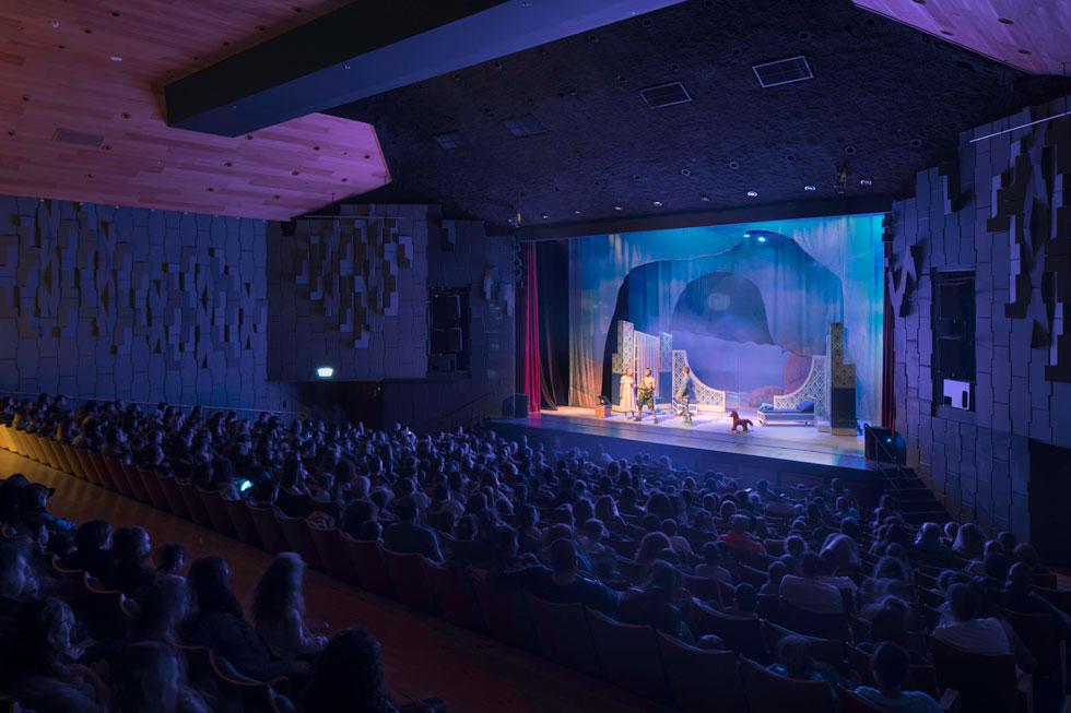 לתיאטרון אין קבוצת שחקנים משלו. ההצגות והמופעים נרכשים מגופים ויוצרים שונים. מדי שנה מבקרים בו כרבע מיליון צופים  (צילום: טל ניסים)