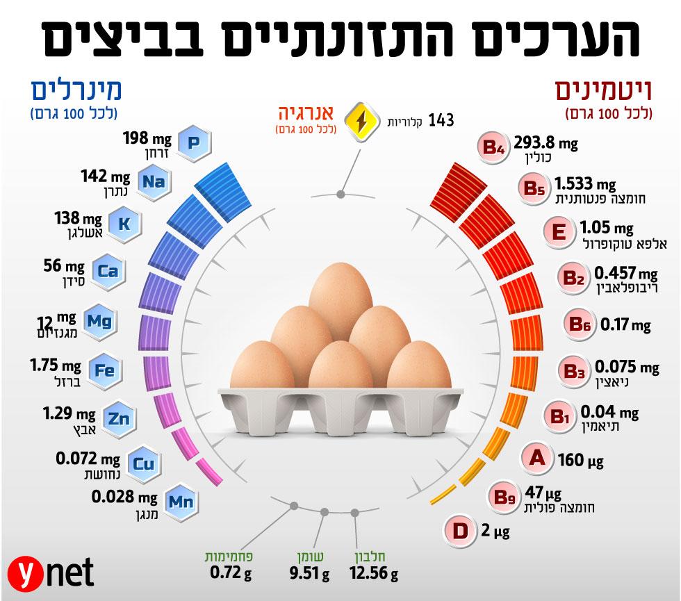 מחקר מצא: ההשפעה של ביצה אחת ליום על המוח Eggs