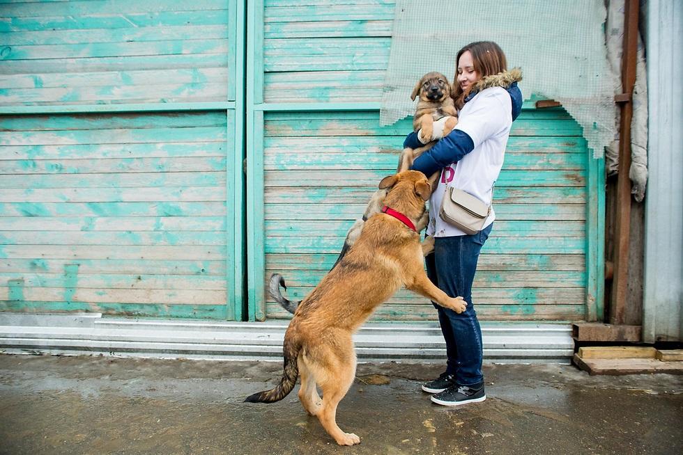 דרושים מתנדבים לסיוע בימי אימוץ לבעלי חיים. ()