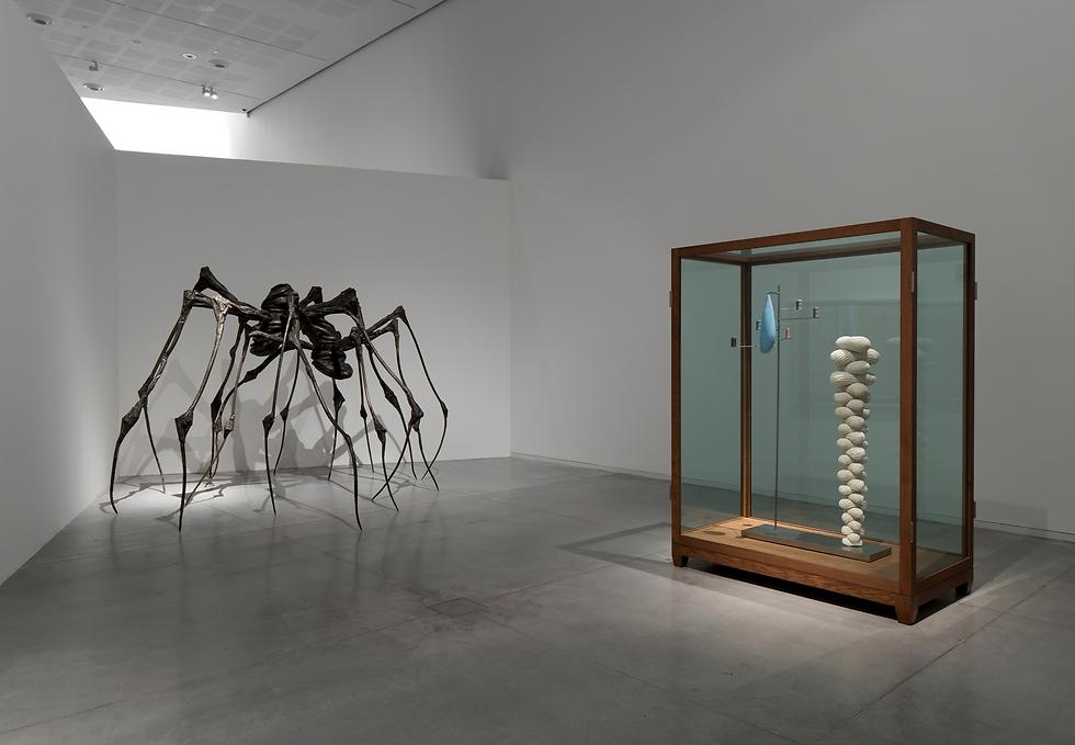ממוזיאון תל אביב ל-MoMA. יצירתה של לואיז בורז'ואה (צילום: אלעד שריג) (צילום: אלעד שריג)