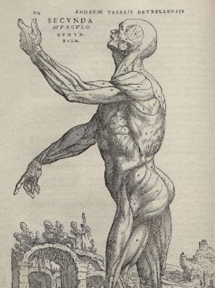 מתוך אחד מספריו (צילום: מתוך ויקיפדיה)
