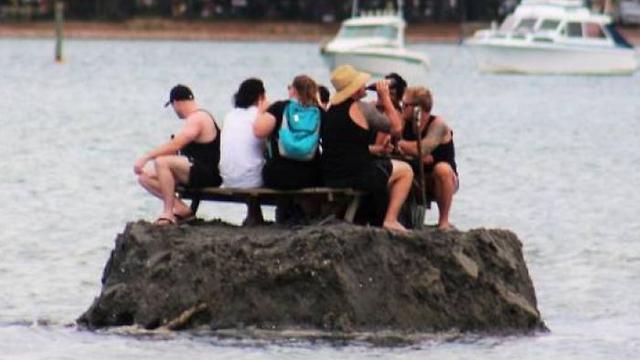 הטבח בניו זילנד Facebook: Ynet בנו אי בים כדי לעקוף איסור על אלכוהול