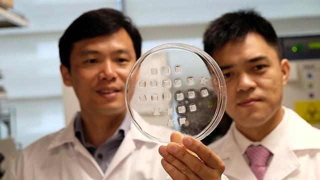 המדענים מסינגפור מציגים את המדבקה שפיתחו. בינתיים נוסתה בעכברים (צילום: NTU Singapore) (צילום: NTU Singapore)