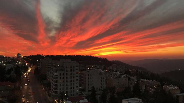 וגם בירושלים (צילום: ענבר שוב-עמי) (צילום: ענבר שוב-עמי)