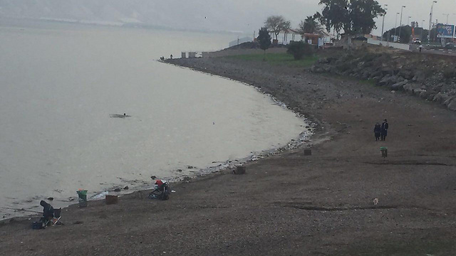 Despite the rain, the Kinneret was still in dire straits (Photo: Yoni Dotan, the Kinneret Authority)