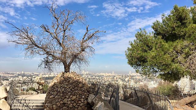 מצפה יאיר (צילום: יעל לרנר) (צילום: יעל לרנר)