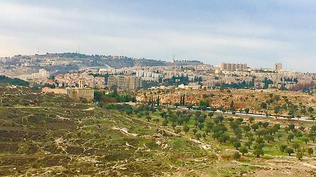 הנוף לכיוון בית לחם (צילום: יעל לרנר) (צילום: יעל לרנר)