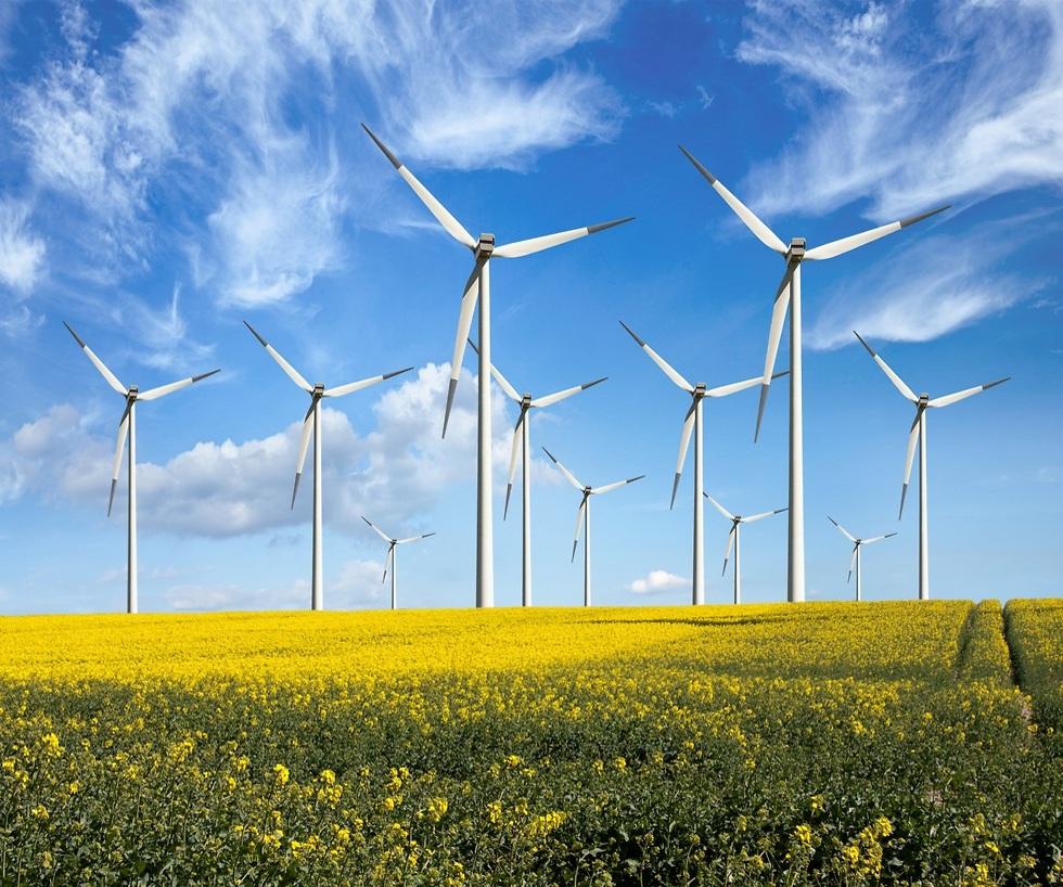 חשמל ירוק למען הסביבה ולמען כולנו (צילום: shutterstock) (צילום: shutterstock)