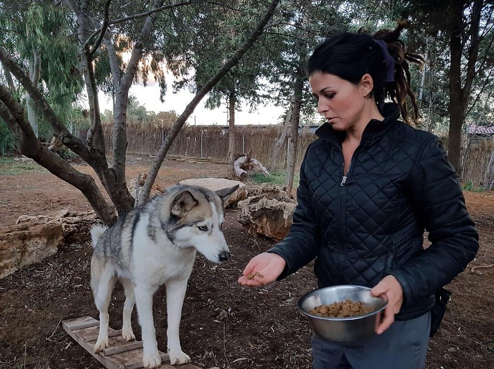 """רייזל פיינשטיין, ה""""לוחשת לכלבים"""", בפעולה (באדיבות הרוח הישראלית)"""