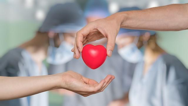 הצלת חיים. תרומת איברים (צילום: shutterstock) (צילום: shutterstock)