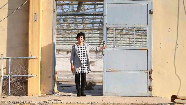 מרסל טייב במקום שהיה מפעל פולגת (צילום: תומריקו) (צילום: תומריקו)